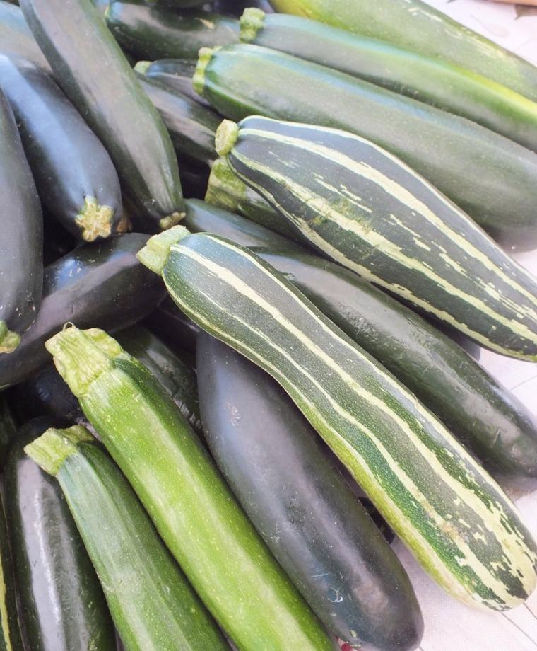 Zucchini-Type Summer Squash